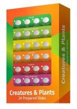 Levenhuk LabZZ CP24 Élőlények és növények – előkészített tárgylemez-készlet