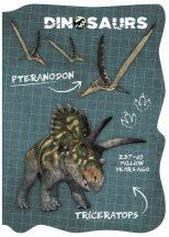 Dinoszaurusz notesz A/6, többféle minta