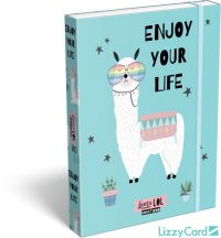 Láma füzetbox A/5, Lollipop Lama LOL