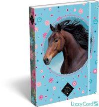 Lovas füzetbox A/5, Wild Beauty blue