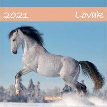 Fali naptár, nagy lemeznaptár, 30x30cm, Lovak, 2021